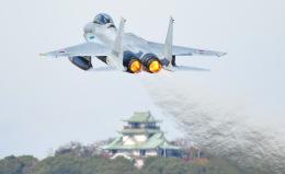 tamtam3839さんが、名古屋飛行場で撮影した航空自衛隊 F-15DJ Eagleの航空フォト(飛行機 写真・画像)