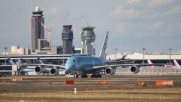 redbull_23さんが、成田国際空港で撮影した全日空 A380-841の航空フォト(飛行機 写真・画像)