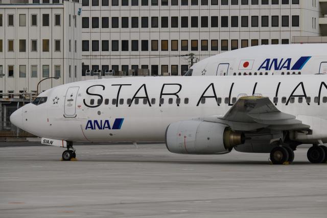 kuraykiさんが、羽田空港で撮影した全日空 737-881の航空フォト(飛行機 写真・画像)
