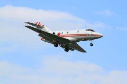 mahiちゃんさんが、入間飛行場で撮影した航空自衛隊 U-125 (BAe-125-800FI)の航空フォト(飛行機 写真・画像)