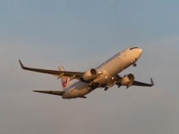 ヨデさんが、羽田空港で撮影した日本航空 737-846の航空フォト(飛行機 写真・画像)