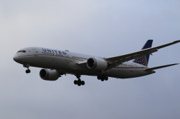 airdrugさんが、成田国際空港で撮影したユナイテッド航空 787-9の航空フォト(飛行機 写真・画像)