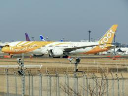 池さん@JA381Aさんが、成田国際空港で撮影したスクート 787-9の航空フォト(飛行機 写真・画像)