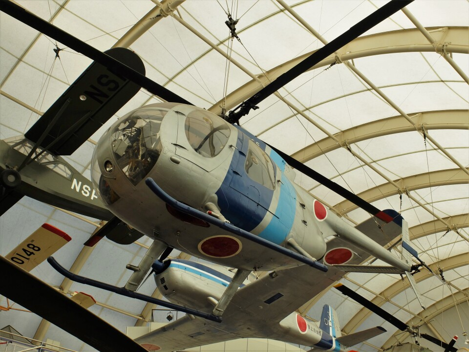 Smyth Newmanさんの陸上自衛隊 Kawasaki OH-6J (31065) 航空フォト