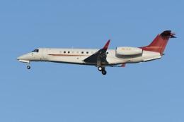 N.tomoさんが、羽田空港で撮影したプレミエア EMB-135BJ Legacy 650の航空フォト(飛行機 写真・画像)