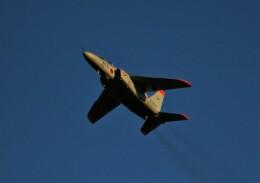 Smyth Newmanさんが、入間飛行場で撮影した航空自衛隊 T-4の航空フォト(飛行機 写真・画像)