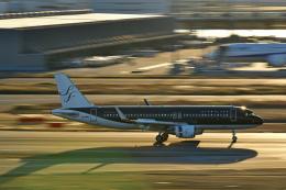 Souma2005さんが、羽田空港で撮影したスターフライヤー A320-214の航空フォト(飛行機 写真・画像)