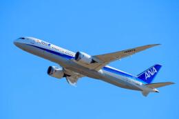 はやたいさんが、成田国際空港で撮影した全日空 787-9の航空フォト(飛行機 写真・画像)