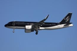 sky-spotterさんが、羽田空港で撮影したスターフライヤー A320-214の航空フォト(飛行機 写真・画像)