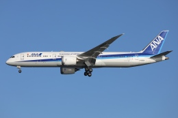 sky-spotterさんが、羽田空港で撮影した全日空 787-9の航空フォト(飛行機 写真・画像)