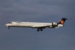 フッ軽の極美さんが、フランクフルト国際空港で撮影したルフトハンザ・シティライン CL-600-2D24 Regional Jet CRJ-900LRの航空フォト(飛行機 写真・画像)