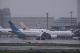 Mr.boneさんが、羽田空港で撮影したガルーダ・インドネシア航空 A330-941の航空フォト(飛行機 写真・画像)