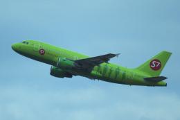 yabyanさんが、ドモジェドヴォ空港で撮影したS7航空 A319-114の航空フォト(飛行機 写真・画像)