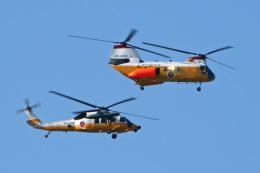 スカルショットさんが、浜松基地で撮影した航空自衛隊 KV-107IIA-5の航空フォト(飛行機 写真・画像)