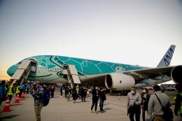 AkiChup0nさんが、成田国際空港で撮影した全日空 A380-841の航空フォト(飛行機 写真・画像)