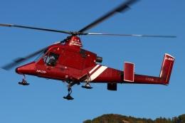 ブルーさんさんが、静岡ヘリポートで撮影したアカギヘリコプター K-1200 K-Maxの航空フォト(飛行機 写真・画像)