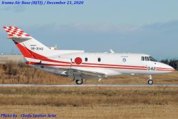 Chofu Spotter Ariaさんが、入間飛行場で撮影した航空自衛隊 U-125 (BAe-125-800FI)の航空フォト(飛行機 写真・画像)