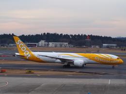 hirohirokinさんが、成田国際空港で撮影したスクート 787-9の航空フォト(飛行機 写真・画像)