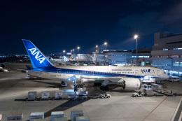 やまのクマさんさんが、福岡空港で撮影した全日空 787-8 Dreamlinerの航空フォト(飛行機 写真・画像)