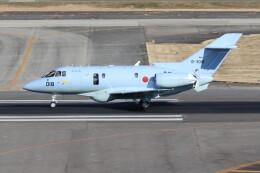 utarou on NRTさんが、名古屋飛行場で撮影した航空自衛隊 U-125A(Hawker 800)の航空フォト(飛行機 写真・画像)