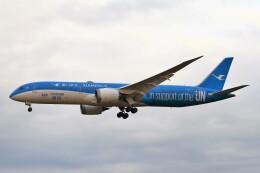 BTYUTAさんが、成田国際空港で撮影した厦門航空 787-9の航空フォト(飛行機 写真・画像)