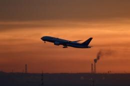hirokongさんが、羽田空港で撮影した全日空 787-8 Dreamlinerの航空フォト(飛行機 写真・画像)