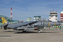 スカルショットさんが、札幌飛行場で撮影したアメリカ海兵隊 AV-8B Harrier II+の航空フォト(飛行機 写真・画像)