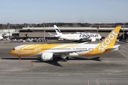 m_aereo_iさんが、成田国際空港で撮影したスクート 787-8 Dreamlinerの航空フォト(飛行機 写真・画像)