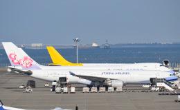 tamtam3839さんが、中部国際空港で撮影したチャイナエアライン A330-302の航空フォト(飛行機 写真・画像)