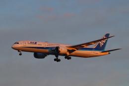 ぼのさんが、羽田空港で撮影した全日空 787-9の航空フォト(飛行機 写真・画像)