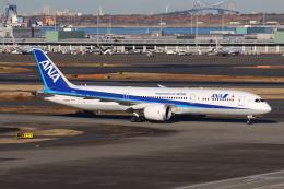 やつはしさんが、羽田空港で撮影した全日空 787-9の航空フォト(飛行機 写真・画像)