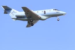 TAK_HND_NRTさんが、小松空港で撮影した航空自衛隊 U-125A(Hawker 800)の航空フォト(飛行機 写真・画像)