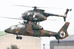 スカルショットさんが、明野駐屯地で撮影した陸上自衛隊 OH-6Dの航空フォト(飛行機 写真・画像)