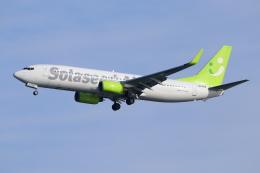 ぼのさんが、羽田空港で撮影したソラシド エア 737-881の航空フォト(飛行機 写真・画像)