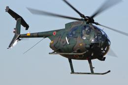 スカルショットさんが、習志野演習場で撮影した陸上自衛隊 OH-6Dの航空フォト(飛行機 写真・画像)