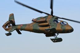 スカルショットさんが、習志野演習場で撮影した陸上自衛隊 OH-1の航空フォト(飛行機 写真・画像)