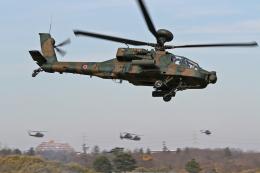 スカルショットさんが、習志野演習場で撮影した陸上自衛隊 AH-64Dの航空フォト(飛行機 写真・画像)