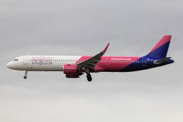 フッ軽の極美さんが、フランクフルト国際空港で撮影したウィズ・エア A321-271NXの航空フォト(飛行機 写真・画像)