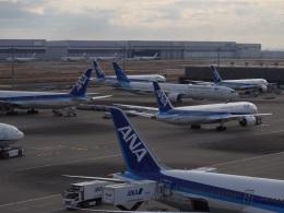 kayさんが、羽田空港で撮影したガルーダ・インドネシア航空 777-3U3/ERの航空フォト(飛行機 写真・画像)