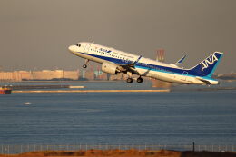石鎚さんが、羽田空港で撮影した全日空 A320-271Nの航空フォト(飛行機 写真・画像)