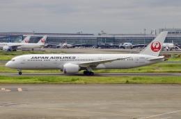 JA8943さんが、羽田空港で撮影した日本航空 787-9の航空フォト(飛行機 写真・画像)