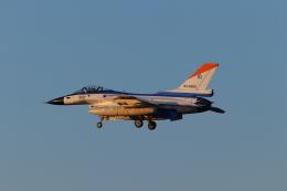 ぼのさんが、岐阜基地で撮影した航空自衛隊 F-2Aの航空フォト(飛行機 写真・画像)