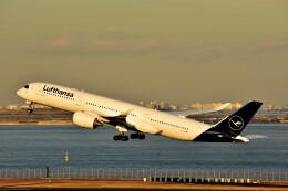 厦龙さんが、羽田空港で撮影したルフトハンザドイツ航空 A350-941の航空フォト(飛行機 写真・画像)