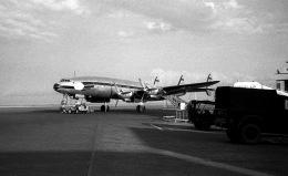 Y.Todaさんが、羽田空港で撮影したフライング・タイガー・ライン L-1049 Super Constellationの航空フォト(飛行機 写真・画像)