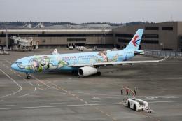 m_aereo_iさんが、成田国際空港で撮影した中国東方航空 A330-343Xの航空フォト(飛行機 写真・画像)