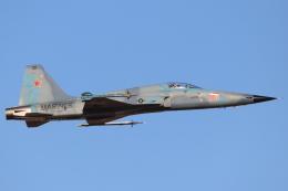 キャスバルさんが、ユマ国際空港で撮影したアメリカ海兵隊 F-5N Tiger IIの航空フォト(飛行機 写真・画像)