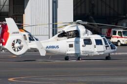 walker2000さんが、東京ヘリポートで撮影したエアバス・ヘリコプターズ・ジャパン AS365N2 Dauphin 2の航空フォト(飛行機 写真・画像)
