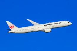オポッサムさんが、羽田空港で撮影した日本航空 787-9の航空フォト(飛行機 写真・画像)