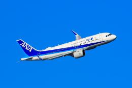 オポッサムさんが、羽田空港で撮影した全日空 A320-271Nの航空フォト(飛行機 写真・画像)