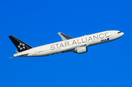 オポッサムさんが、羽田空港で撮影した全日空 777-281の航空フォト(飛行機 写真・画像)